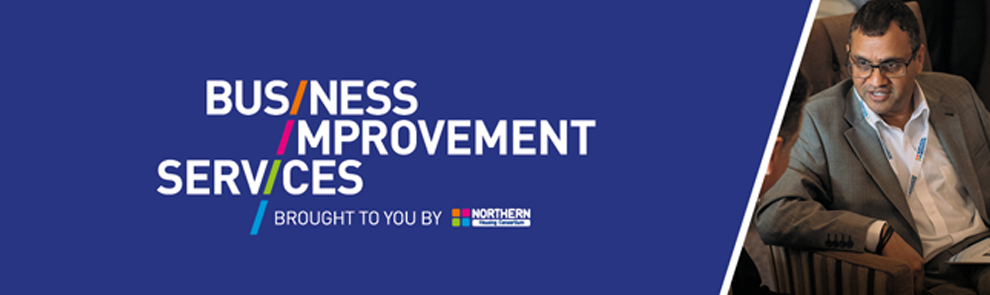 Business Improvement Services